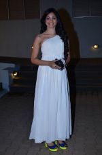 at CCL new season red carpet in Grand Hyatt, Mumbai on 20th Dec 2013 (176)_52b54552126c8.JPG