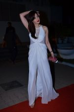 at CCL new season red carpet in Grand Hyatt, Mumbai on 20th Dec 2013 (207)_52b5455b84c29.JPG