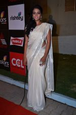 at CCL new season red carpet in Grand Hyatt, Mumbai on 20th Dec 2013