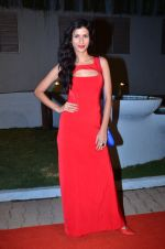 at CCL new season red carpet in Grand Hyatt, Mumbai on 20th Dec 2013 (220)_52b545619188e.JPG