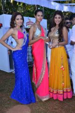 at Kingfisher 2013 calendar launch in Alibaug, Mumbai on 21st Dec 2013 (899)_52b6b8a0e20af.JPG