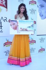 at Kingfisher 2013 calendar launch in Alibaug, Mumbai on 21st Dec 2013 (941)_52b6b8a76b3ff.JPG