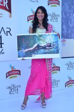 at Kingfisher 2013 calendar launch in Alibaug, Mumbai on 21st Dec 2013 (944)_52b6b8a8c68a7.JPG