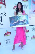 at Kingfisher 2013 calendar launch in Alibaug, Mumbai on 21st Dec 2013 (945)_52b6b8a94340e.JPG