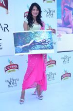 at Kingfisher 2013 calendar launch in Alibaug, Mumbai on 21st Dec 2013 (946)_52b6b8a9b887b.JPG