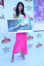 at Kingfisher 2013 calendar launch in Alibaug, Mumbai on 21st Dec 2013 (948)_52b6b8aae9a5c.JPG