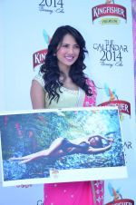 at Kingfisher 2013 calendar launch in Alibaug, Mumbai on 21st Dec 2013 (949)_52b6b8ab89c92.JPG