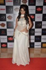 Sana Khan at Telly Calendar 2014 launch in Westin Hotel, Mumbai on 23rd Dec 2013 (120)_52b978d616c10.JPG