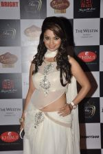 Sana Khan at Telly Calendar 2014 launch in Westin Hotel, Mumbai on 23rd Dec 2013 (123)_52b978d6c75ac.JPG