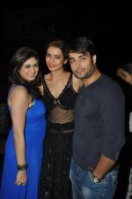 Vahbbiz Dorabjee, Vivian Dsena at Karishma Tanna_s Birthday Bash in Escobar, Mumbai on 22nd Dec 2013 (31)_52b9391f3bc33.JPG