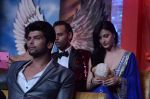 Andy, Elli Avram at Bigg Boss 7 grand finale on 28th Dec 2013 (85)_52bf96207c02c.JPG