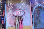 Gauhar Khan, Tanisha Mukherjee at Bigg Boss 7 grand finale on 28th Dec 2013 (153)_52bf97ba01819.JPG