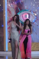 Gauhar Khan, Tanisha Mukherjee at Bigg Boss 7 grand finale on 28th Dec 2013 (157)_52bf97bad4d74.JPG
