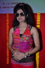 Reva Rathod at Saptarang music concert press meet in Fort on 30th Dec 2013 (47)_52c265981f448.JPG