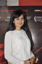 Niharika Singh promote Miss Lovely in Mumbai on 4th Jan 2014 (20)_52c8d0143d943.JPG