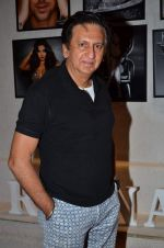 Kailash Surendranath at the Launch of Dabboo Ratnani_s Calendar 2014 in Mumbai on 5th Jan 2014 (273)_52cac0e245680.JPG