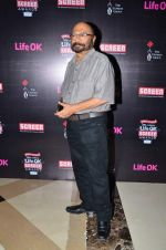 Govind Nihalani at Screen Awards Nomination Party in J W Marriott, Mumbai on 7th Jan 2014 (18)_52ce3367a5a8a.JPG