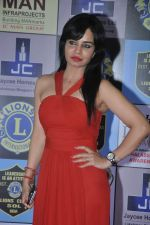 at Lions Awards in Mumbai on 7th Jan 2014 (15)_52ce355e9a3f1.JPG