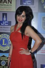 at Lions Awards in Mumbai on 7th Jan 2014 (18)_52ce355fe9840.JPG