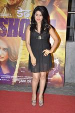 Arjumman Mughal at Dedh Ishqiya premiere in Cinemax, Mumbai on 9th Jan 2014 (33)_52d0028554a1a.JPG