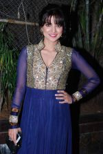Kulraj Randhawa at Lohri festival in Raheja Classique, Mumbai on 11th Jan 2014 (130)_52d2672e65113.JPG