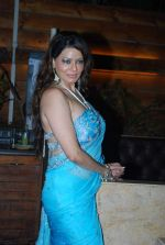 Poonam Jhawer at Strings of Passion film  music launch in Sheesha Sky Lounge on 13th Jan 2014 (51)_52d4a894a15a5.JPG