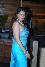 Poonam Jhawer at Strings of Passion film  music launch in Sheesha Sky Lounge on 13th Jan 2014 (54)_52d4a895ad210.JPG