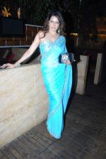Poonam Jhawer at Strings of Passion film  music launch in Sheesha Sky Lounge on 13th Jan 2014 (34)_52d4a89066ff4.JPG