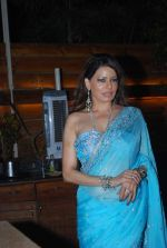 Poonam Jhawer at Strings of Passion film  music launch in Sheesha Sky Lounge on 13th Jan 2014 (46)_52d4a892dd683.JPG