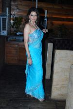 Poonam Jhawer at Strings of Passion film  music launch in Sheesha Sky Lounge on 13th Jan 2014 (53)_52d4a895565b1.JPG