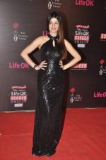 Kainaat Arora at 20th Annual Life OK Screen Awards in Mumbai on 14th Jan 2014(473)_52d6863a02f1d.JPG