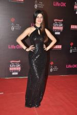 Kainaat Arora at 20th Annual Life OK Screen Awards in Mumbai on 14th Jan 2014(475)_52d6863ad343b.JPG