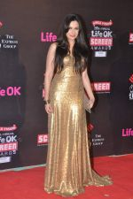 Mrinalini Sharma at 20th Annual Life OK Screen Awards in Mumbai on 14th Jan 2014 (193)_52d6884e74a75.JPG