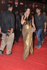 Mrinalini Sharma at 20th Annual Life OK Screen Awards in Mumbai on 14th Jan 2014 (194)_52d6884ed33eb.JPG