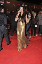Mrinalini Sharma at 20th Annual Life OK Screen Awards in Mumbai on 14th Jan 2014 (195)_52d6884f390ad.JPG