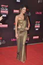 Nicole Faria at 20th Annual Life OK Screen Awards in Mumbai on 14th Jan 2014(489)_52d68534e2a0f.JPG