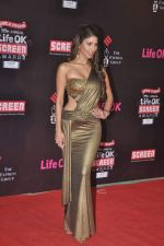 Nicole Faria at 20th Annual Life OK Screen Awards in Mumbai on 14th Jan 2014(491)_52d68535ed44e.JPG