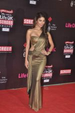 Nicole Faria at 20th Annual Life OK Screen Awards in Mumbai on 14th Jan 2014(492)_52d6853650f59.JPG