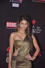 Nicole Faria at 20th Annual Life OK Screen Awards in Mumbai on 14th Jan 2014(493)_52d685585c7e9.JPG