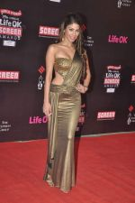 Nicole Faria at 20th Annual Life OK Screen Awards in Mumbai on 14th Jan 2014(494)_52d68536af79f.JPG