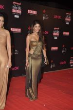 Nicole Faria at 20th Annual Life OK Screen Awards in Mumbai on 14th Jan 2014(515)_52d6853716d0b.JPG