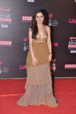 Shraddha Arya at 20th Annual Life OK Screen Awards in Mumbai on 14th Jan 2014 (250)_52d689a12d9f6.JPG
