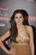 Shraddha Arya at 20th Annual Life OK Screen Awards in Mumbai on 14th Jan 2014(543)_52d689a2ed299.JPG