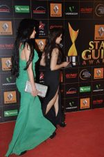 at The Renault Star Guild Awards Ceremony in NSCI, Mumbai on 16th Jan 2014(337)_52d8dbd3335ce.JPG