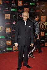 at The Renault Star Guild Awards Ceremony in NSCI, Mumbai on 16th Jan 2014(343)_52d8dbd49569e.JPG