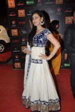 at The Renault Star Guild Awards Ceremony in NSCI, Mumbai on 16th Jan 2014(350)_52d8dbd71a8a4.JPG