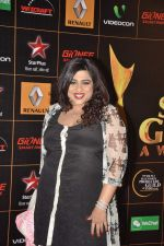 at The Renault Star Guild Awards Ceremony in NSCI, Mumbai on 16th Jan 2014(395)_52d8dbd82a5c0.JPG