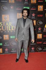 at The Renault Star Guild Awards Ceremony in NSCI, Mumbai on 16th Jan 2014(407)_52d8dbda9e8f9.JPG
