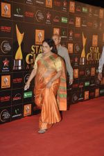 at The Renault Star Guild Awards Ceremony in NSCI, Mumbai on 16th Jan 2014(550)_52d8dbdf8cc01.JPG
