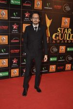 at The Renault Star Guild Awards Ceremony in NSCI, Mumbai on 16th Jan 2014(331)_52d8dbd0eedec.JPG